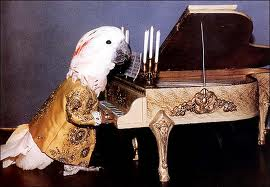 Parrot-piano